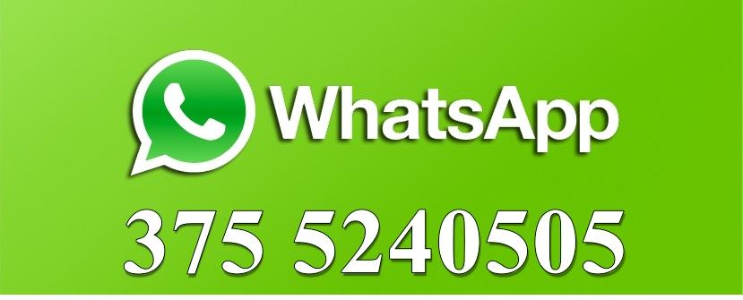 Whatsapp-Logo-Vector